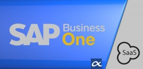 SaaS SAP Business One CRM