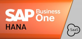 SaaS SAP Business One Hana CRM