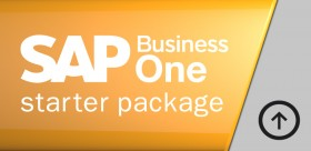 Actualización Starter Package a SAP Business One Financiero limitado