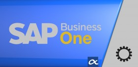 SAP Business One Di-Server