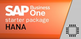 SAP Business One Starter Package Hana Usuario