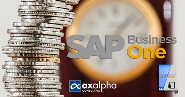 manuales SAP Business One finanzas
