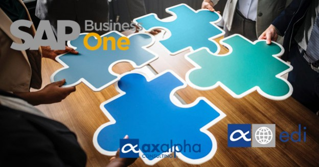 Módulo EDI SAP Business One