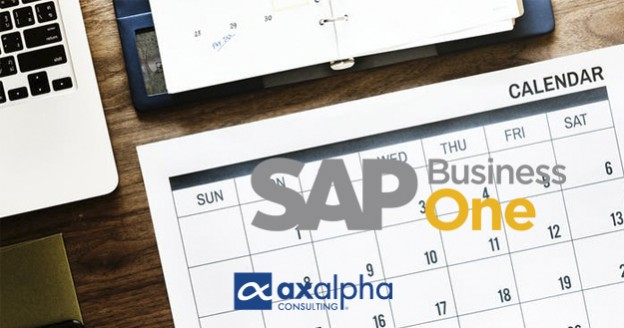 Productividad SAP Business One