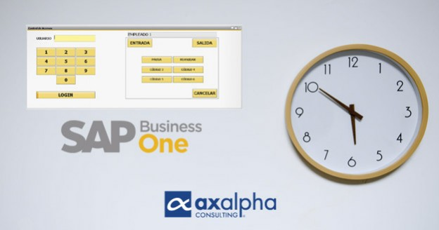SAP Business One control horario módulo