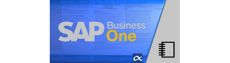 SAP Business One Manuals