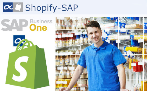 SAP Business One e-commerce