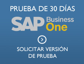 Versión demo de SAP Business One