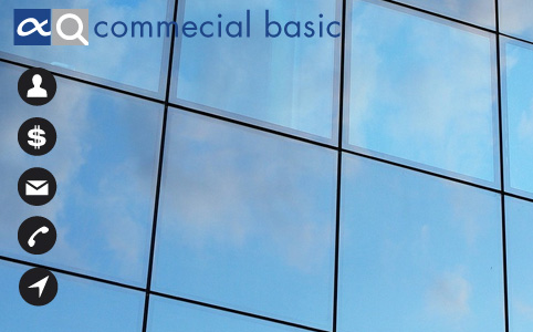 Basic commercial module for SAP Business One